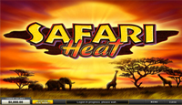 Safari Heat Slots