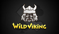 Wild Viking Card Game