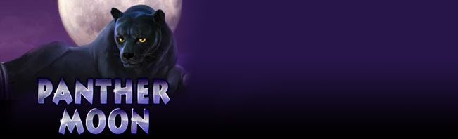 Play Panther Moon Slots Online at Casino.com NZ