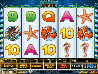 casino slot dolphin reef